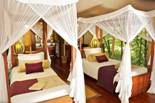 Luxury Twin tent with twin beds