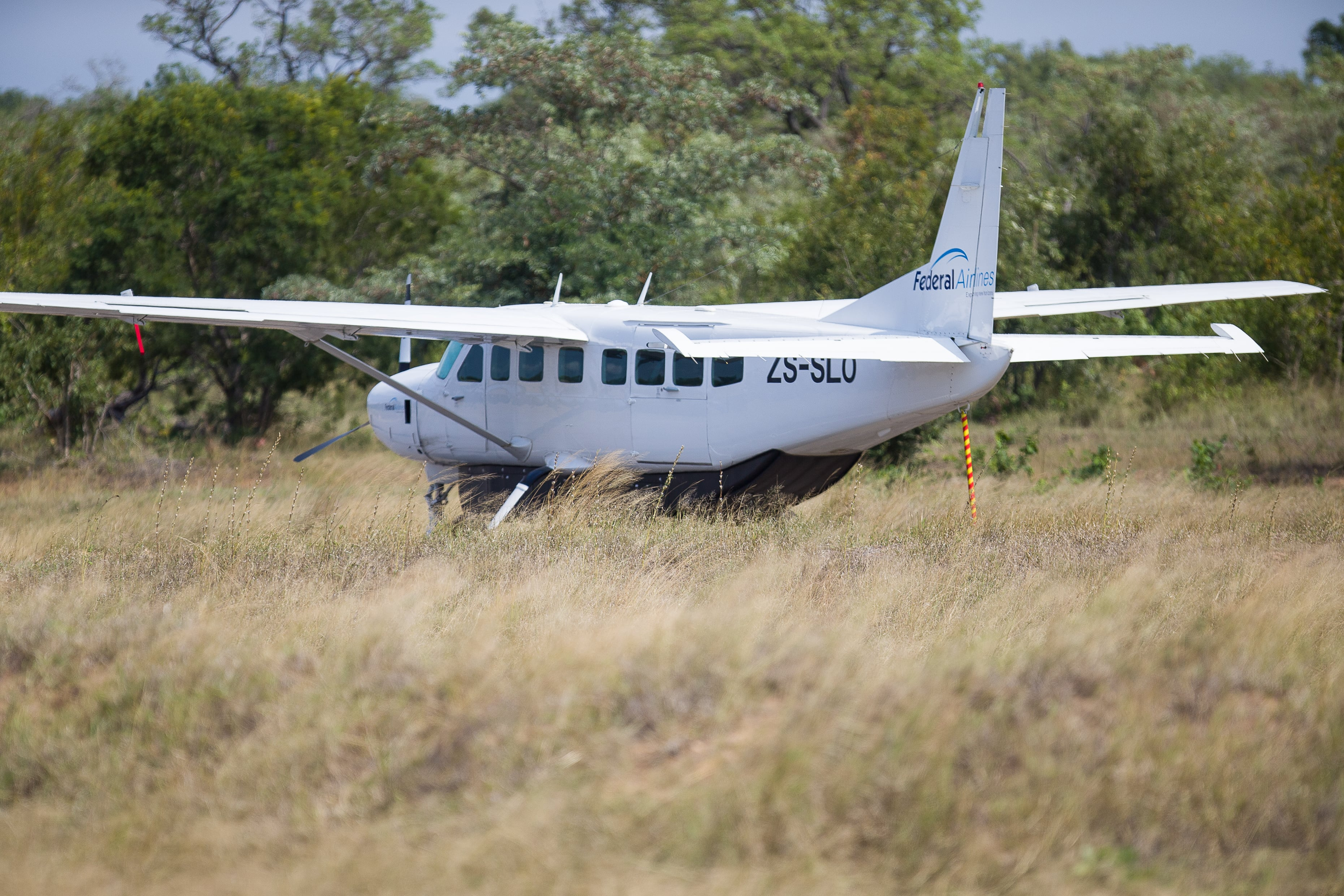 Flying to the Bush