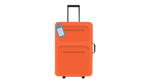 Website Icon Luggage