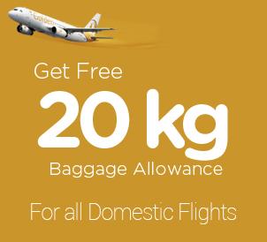 20kg baggage