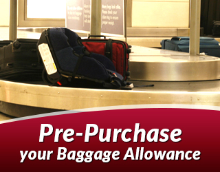 SH_banner_Baggage_Allowance_001