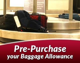 SH_banner_Baggage_Allowance_001