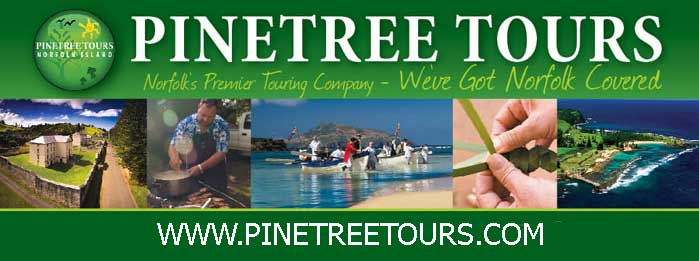 Pinetree Tours