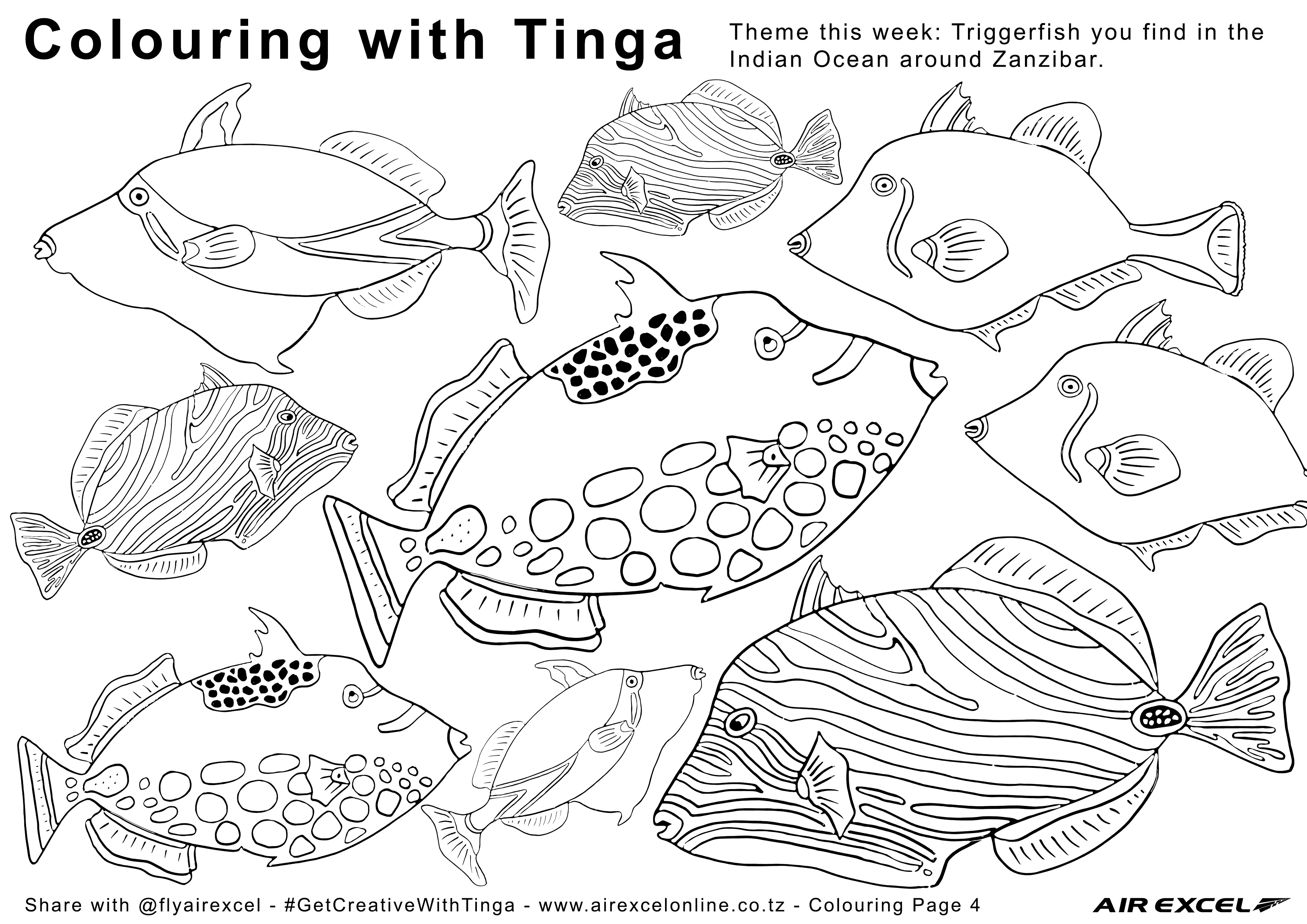Air Excel Colouring Page 4 Triggerfish