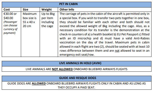 Pet in cabin