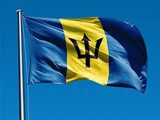 BGI Flag