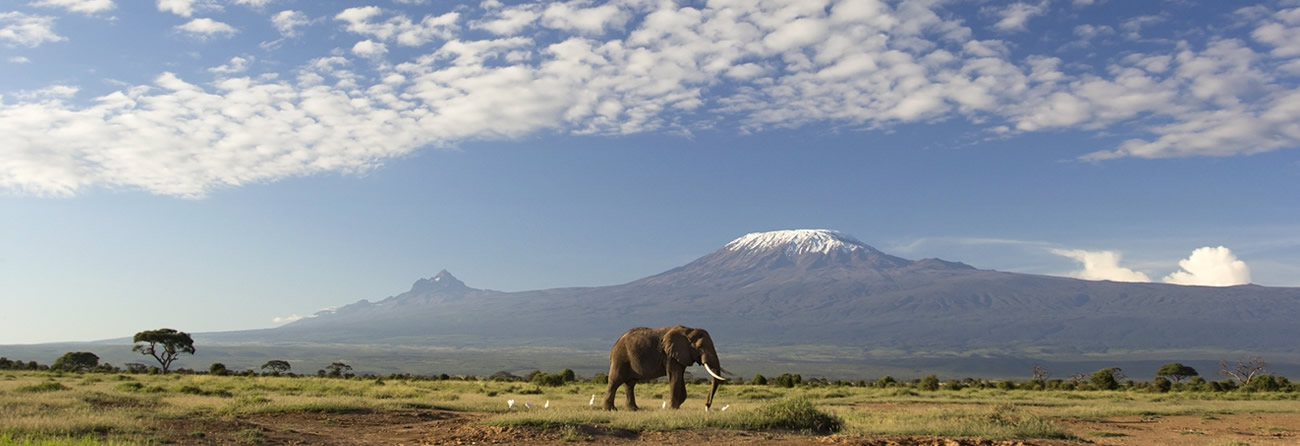Fly Safarilink Amboseli