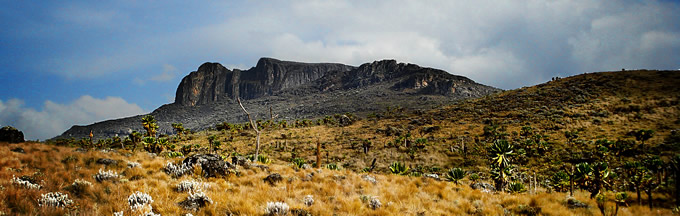 Mount_Elgon.jpg