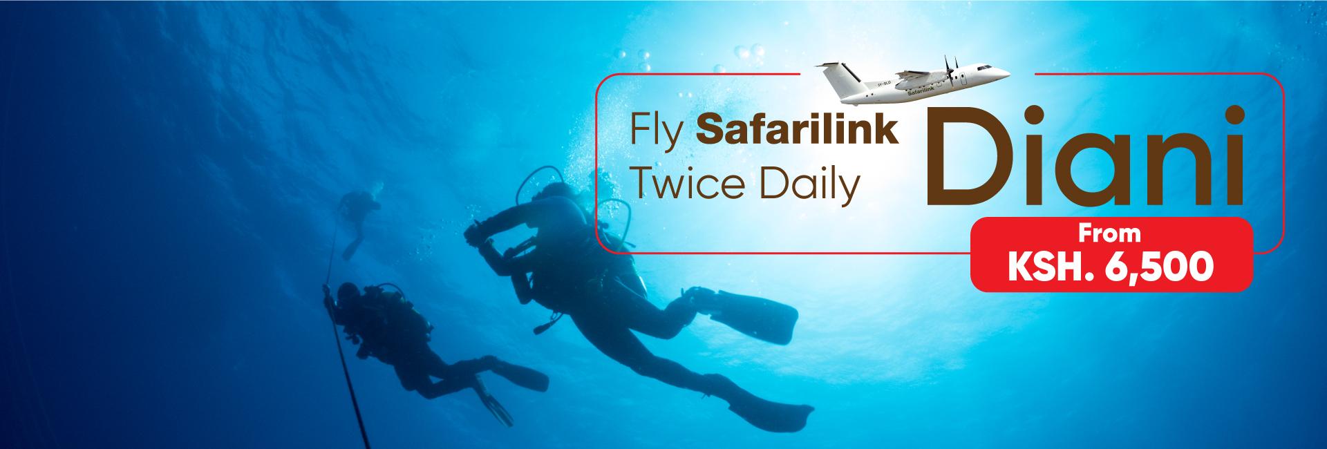 Safarilink safety measures