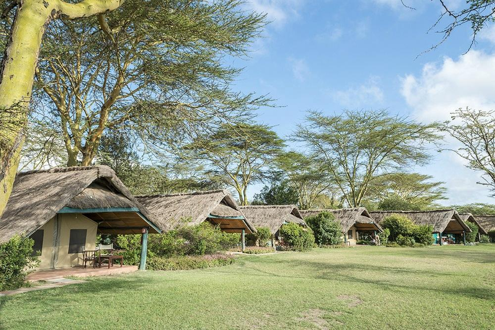 new concept 8a186 3e56d Safarilink-2 nights Sweetwaters Serena Camp flying package