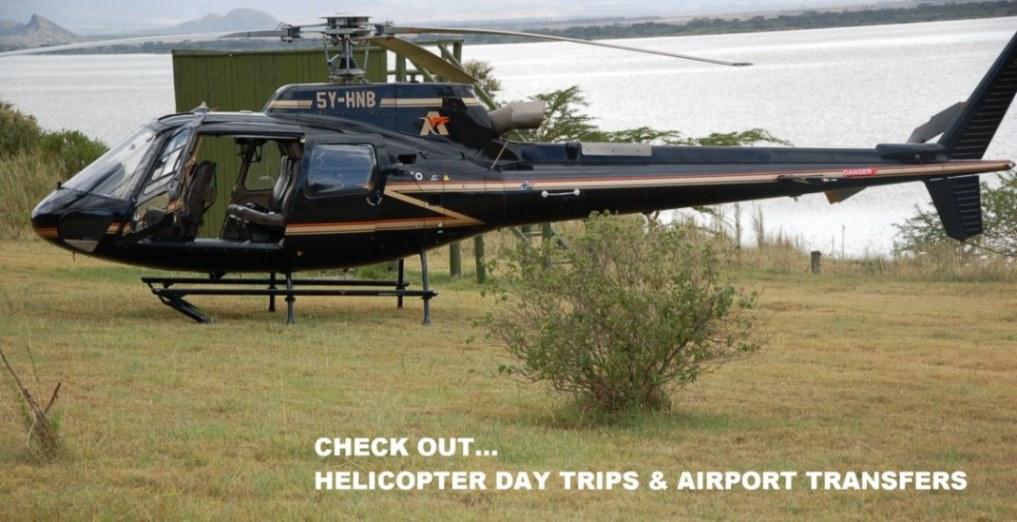 Helicopter_homepg.jpg