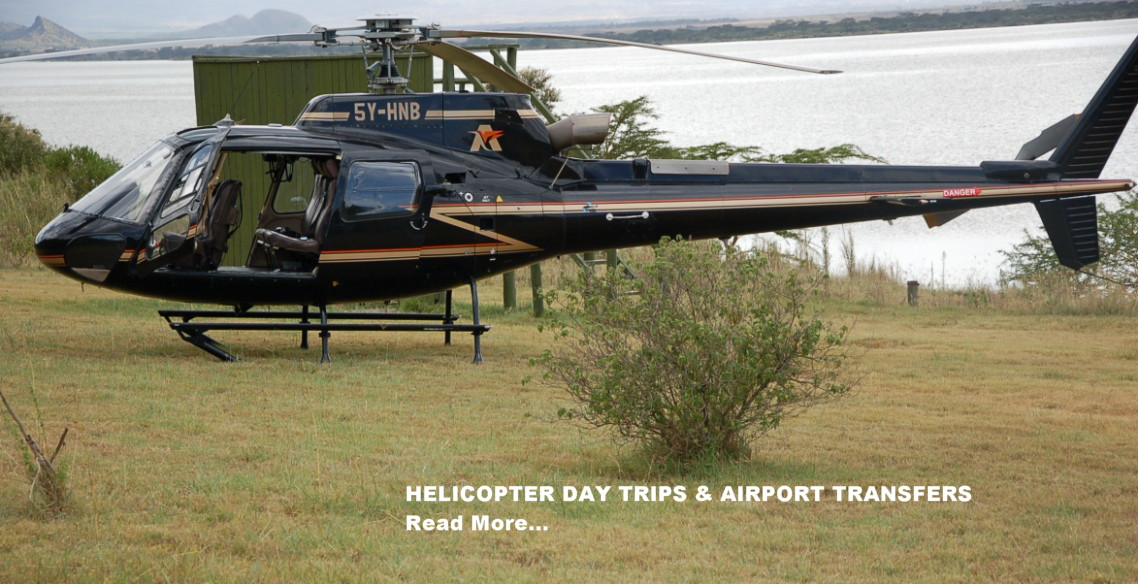 Helicopter_homepg.jpg