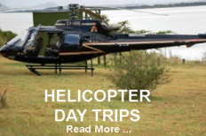 Helicopter Package
