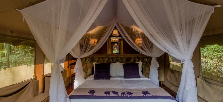 Airkenya Express LTD-2019 SAROVA MARA 3 days 2 nights