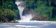 aerolink-waterfall