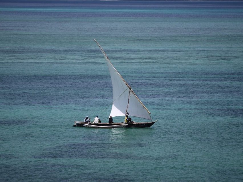 Dar Ocean View