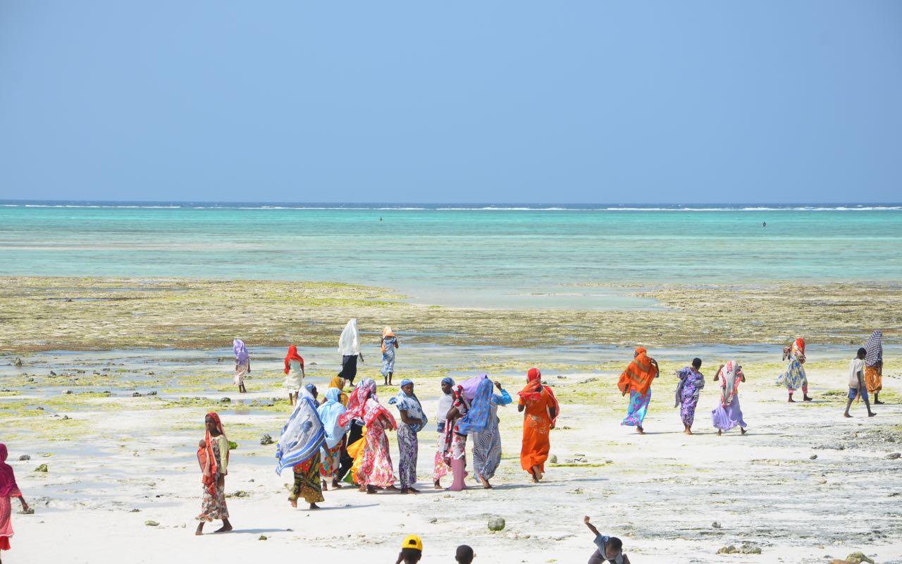 Zanzibar Beach Ladies