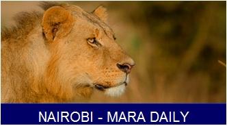 nbi mara daily banner 4
